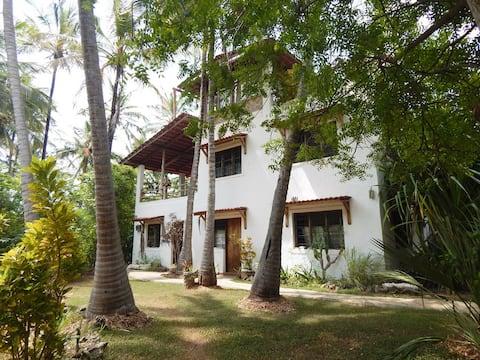 Mangroove House