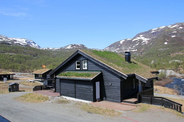 Koselig leilighet på Filefjell, Tyinkrysset