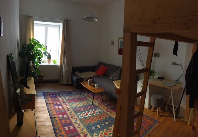 Cosy apartment close to city center and the river