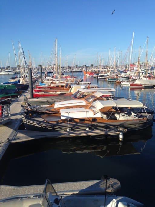 Vrai lit petit dej terrasse pkg plage port - Restaurant arcachon port de plaisance ...