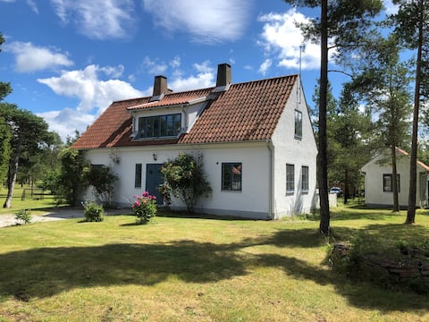 Modern House in Gotlandic style