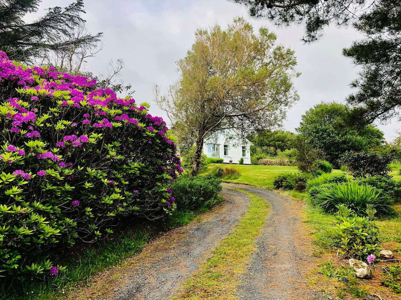 Nicely secluded in a mature garden