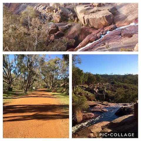 John Forrest National Park only a 20 minute walk from our house.