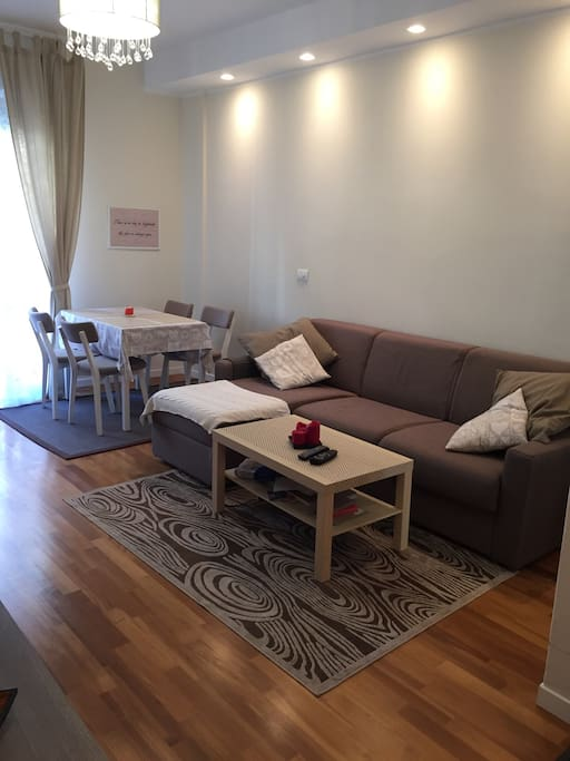 Livingroom with a sofa bed suitable for 2 people