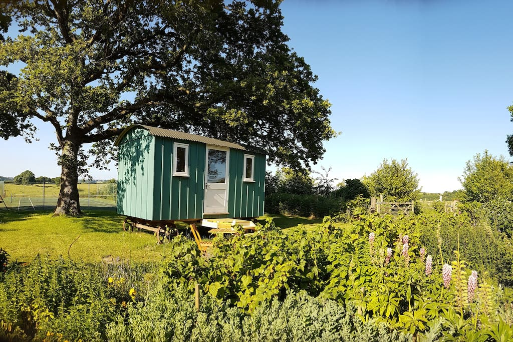 Shepherd's hut in grounds