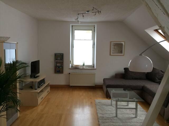 Schöne große 2-Zi-Wohnung- zentral - Kaiserslautern