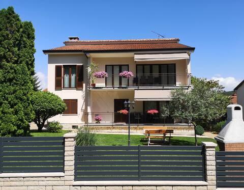 Spacious apartment Diana in central Istria