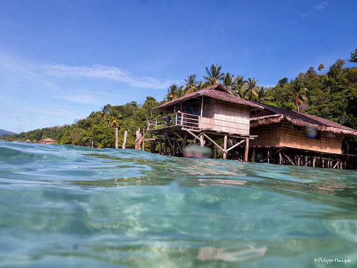 Raja Ampat 's  Papuarts Alter Native Stay