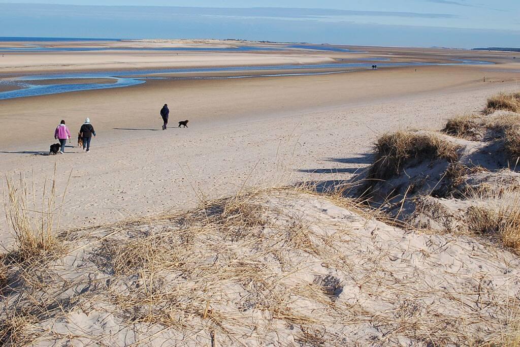 The beach walk from the garden