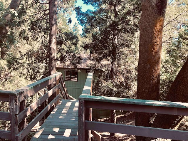 Mountain Tree House Escape
