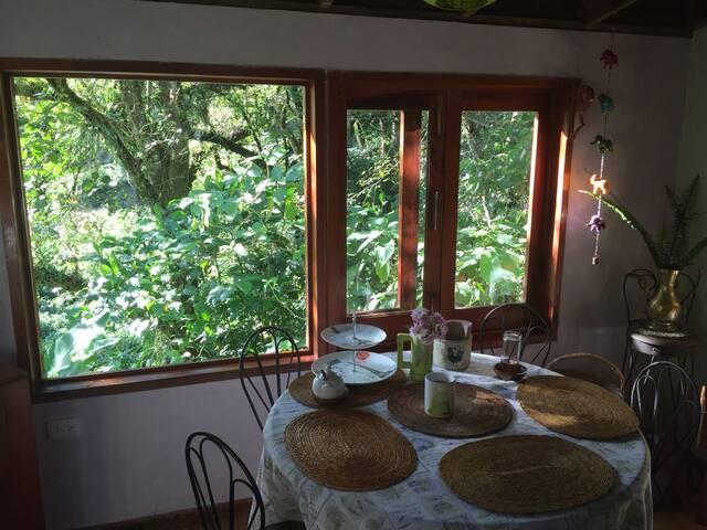 La casa del Bosque Habitación doble - Xalapa - Rumah