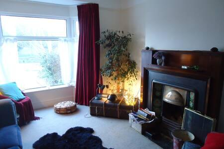 Attic bedroom, Rialto, D7, sleeps 3 - Dublin