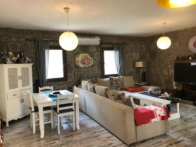 Mustakil Tas villa