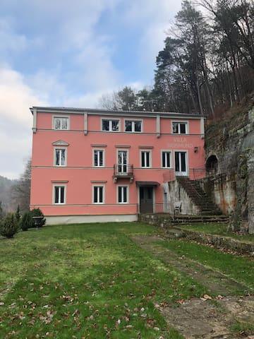 Ganze 3-Zimmerwohnung in Villa Sigismund