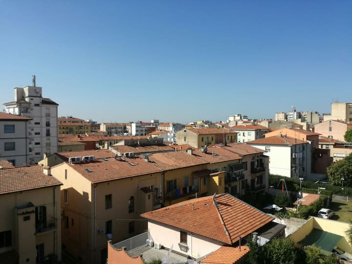 Book now and enjoy your time in Pisa and Tuscany 2