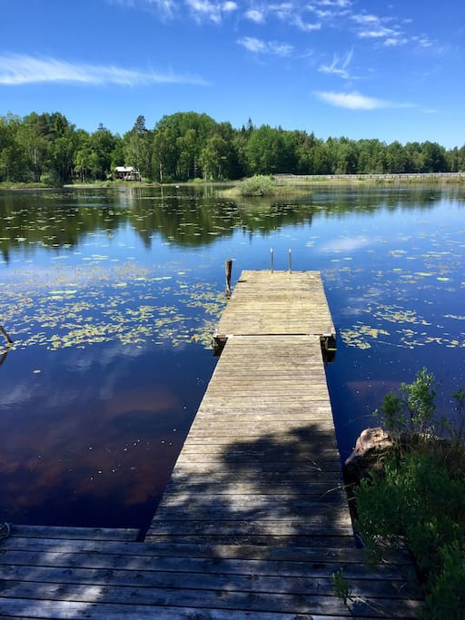The cottage is privately by the lake - this your own jetty
