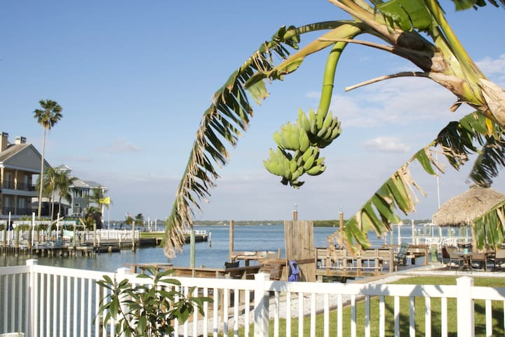 🐬Dolphin view Oasis⚓King Bed⎈Games⎈by Johns pass!