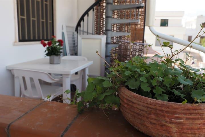 Sanpietro in Bevagna - Primo Piano