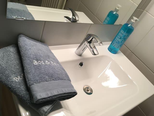 badkamer met wastafel, douche en toilet