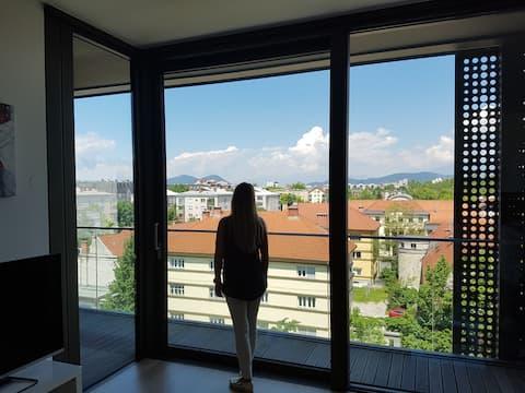Luxus-moderne Wohnung im Zentrum