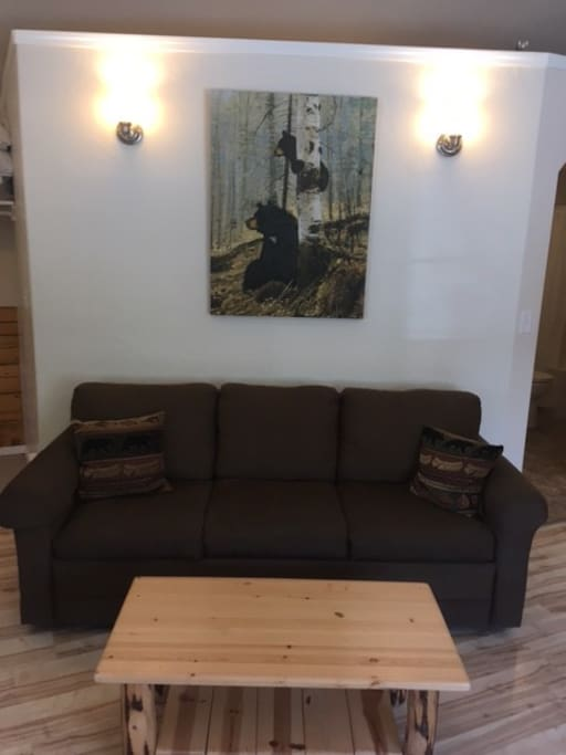Sofa bed & coffee table