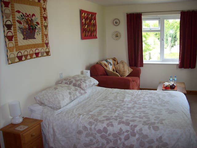 Bed and breakfast in a quiet country village. - Bodmin - Hus
