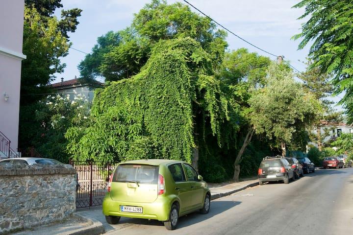 VILLA AGRAMPELI with a magnificent garden. - Mitilini - Casa