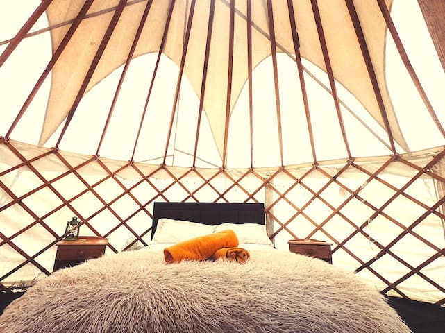 Rainbow Lodge 6m Yurt
