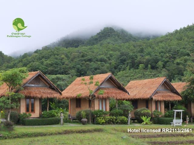 ✤Rice paddy-secluded stay w/breakfast-15min walk๑