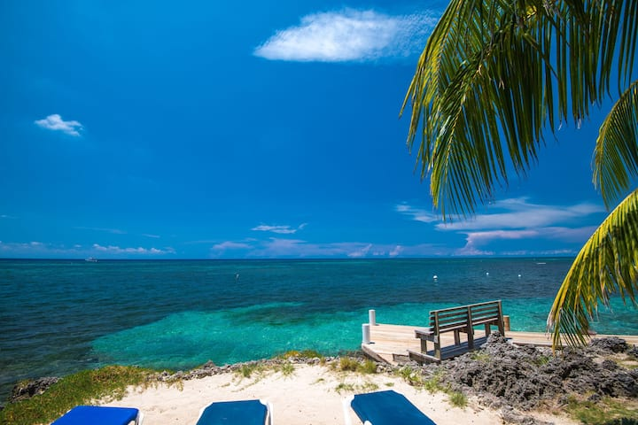 NO FEES - Ocean front Value Bungalow - A/C, Breakfast and Airport transfers included - Las Rocas Resort & Dive Center
