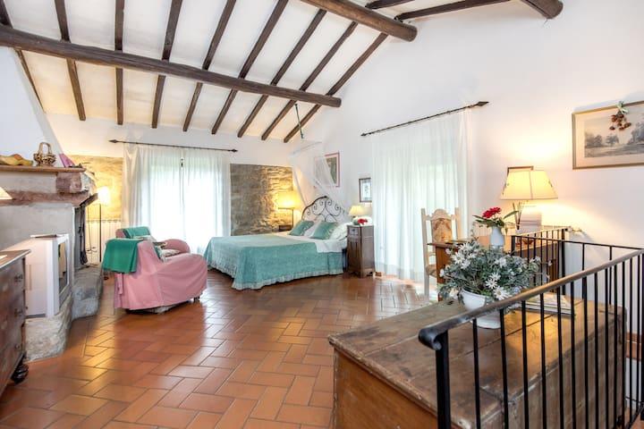 Idyllic cosy cottage+ pool close to Florence - Londa - Pondok alam