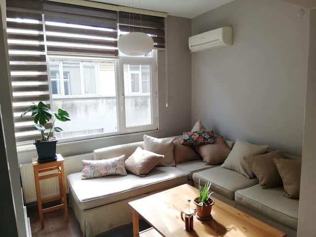 Cozy and Central Flat in Kadıköy