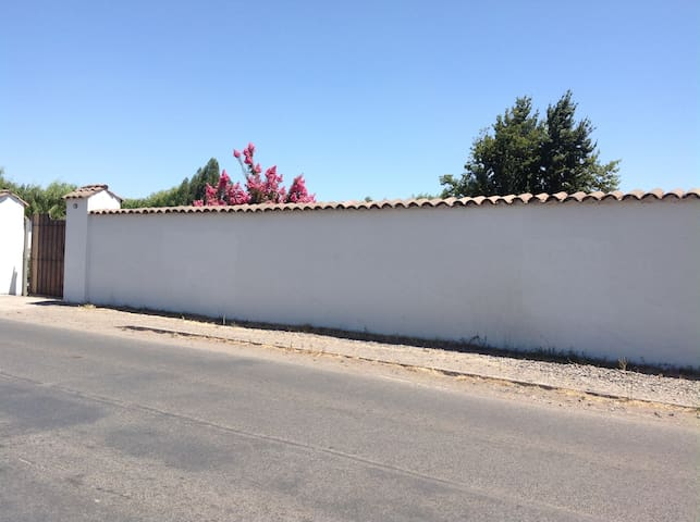 The large Wall souronding the house, seen from outside.