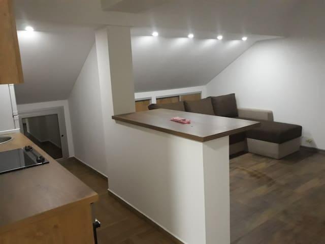 Studio Apartman Surcin