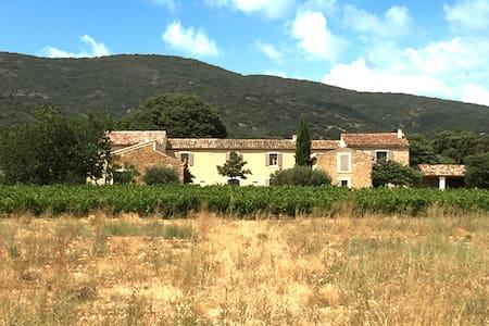 Chambre Thym au Mas La Rivayne - Gjestehus
