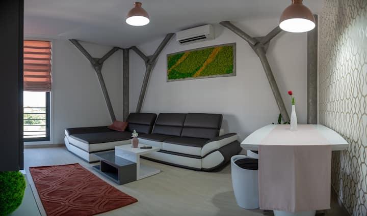 Grey Steel Deluxe Apartment