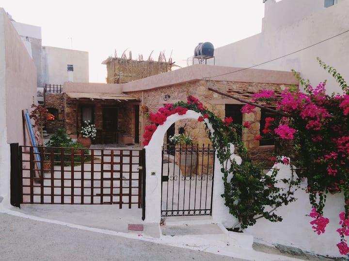 Artist Stone House