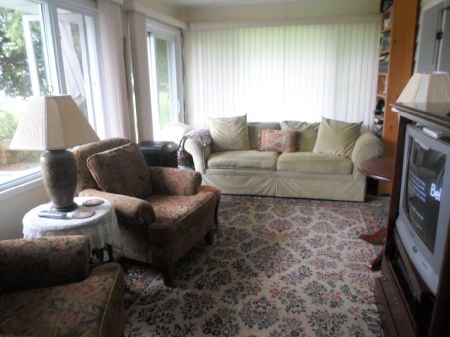 Living Room w. Queen sofa bed