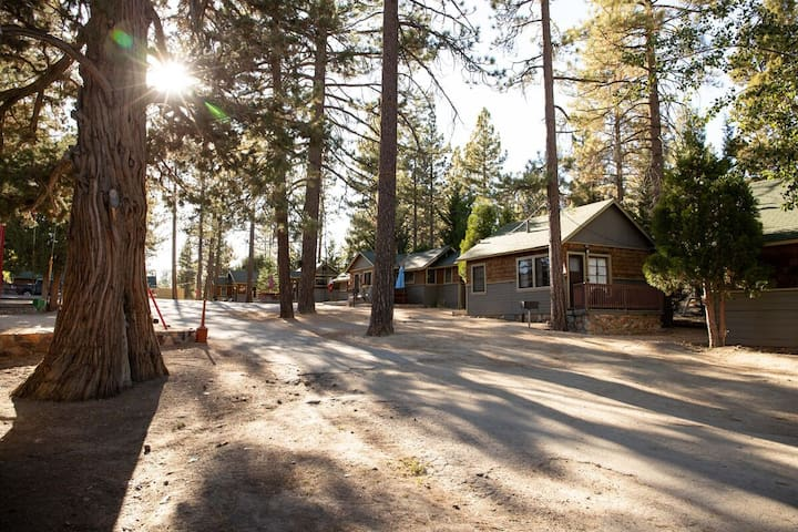 Big Pines Cozy Lakeview Resort Studio Cottage For Two