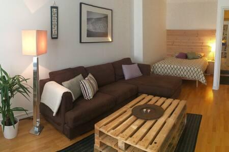 Sunny Studio Penthouse for Business or Pleasure - Helsinki