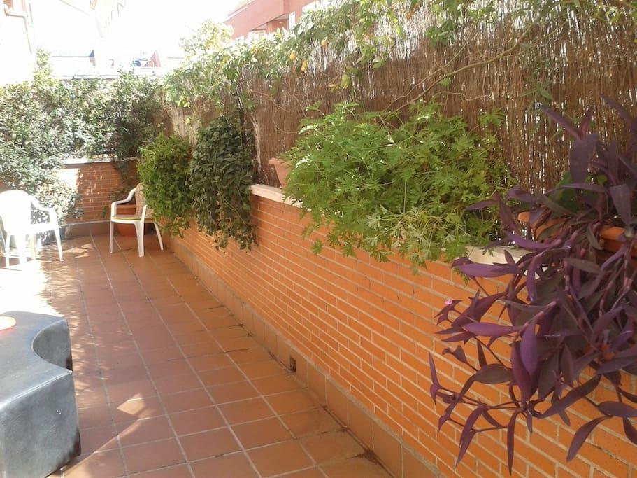 Room's terrace