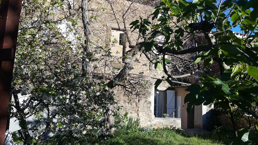 Charming house between Narbonne and Carcassonne