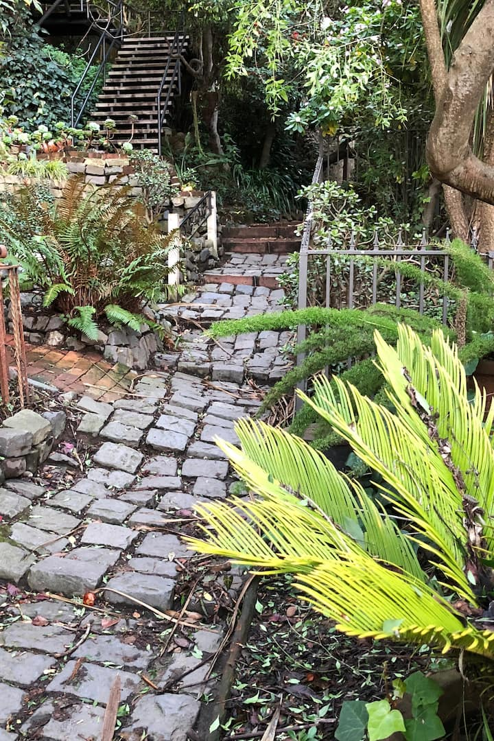 Wander on plant filled secret walkways