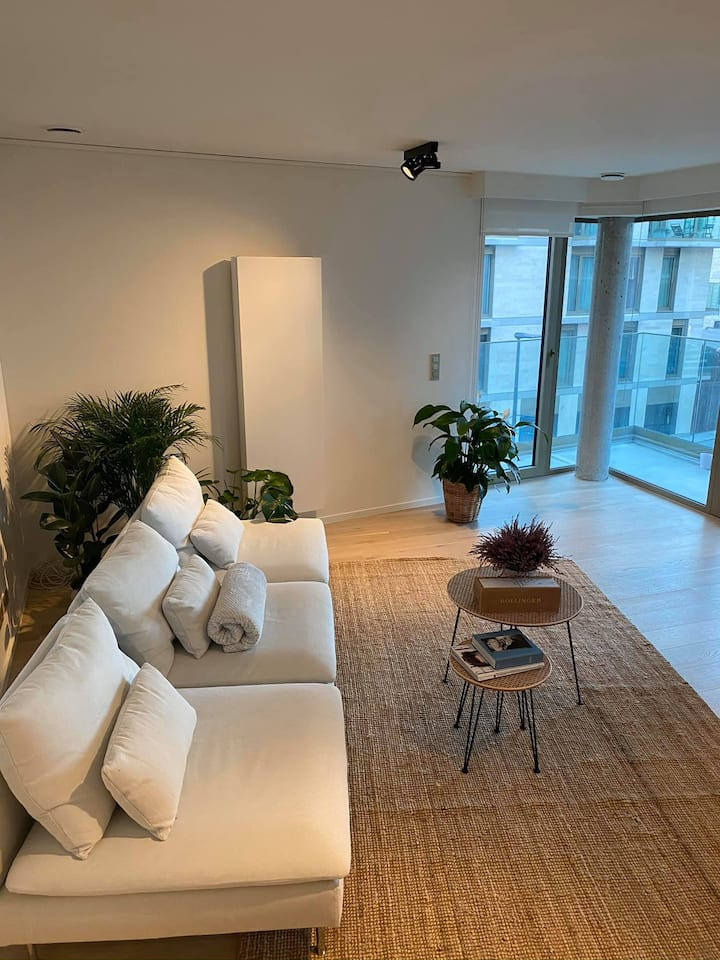 Room in luxe apartment with nice terrace