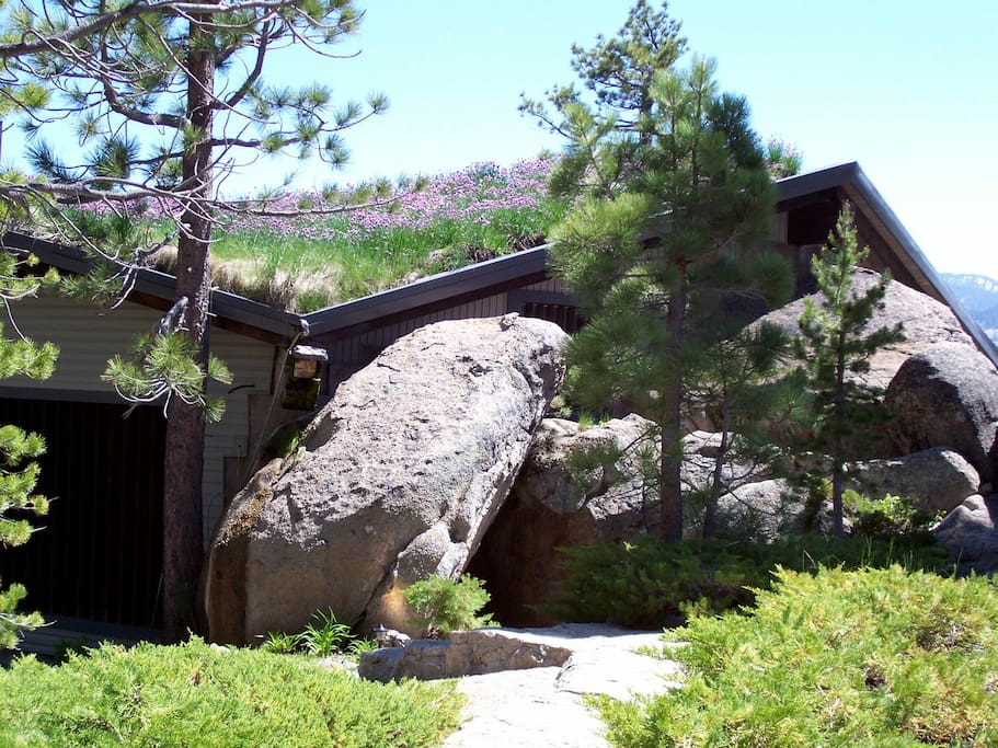Stonehenge tahoe