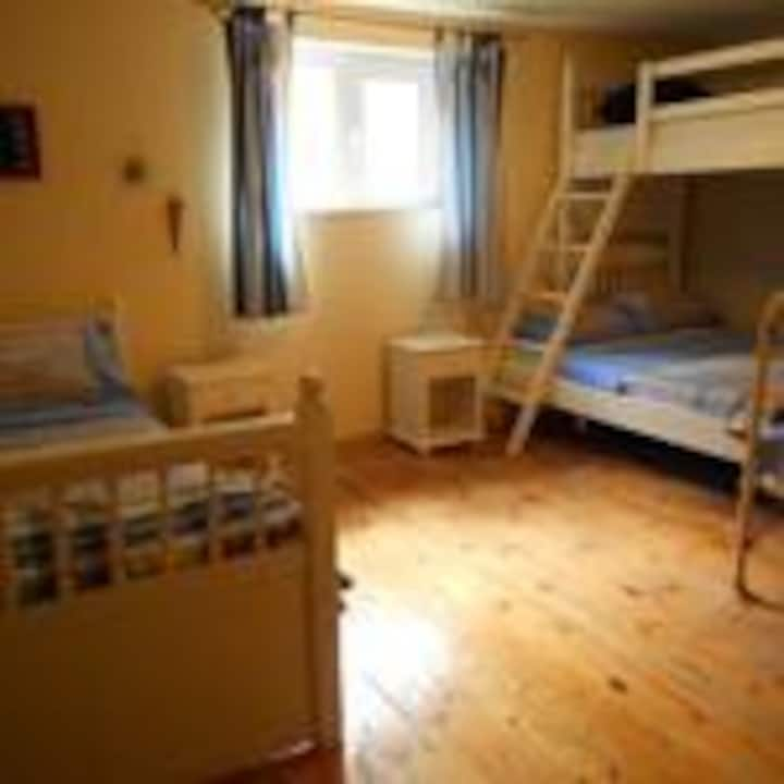 1 Bed in Shared mixed Dorm