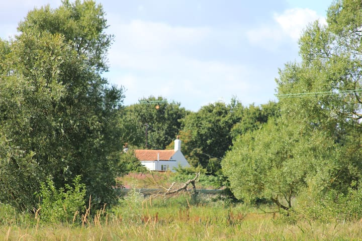 Suffolk Cottage - unrestricted countryside views - Suffolk - Huis