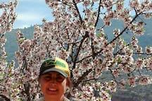 Almendros en flor. La primavera es una buena excusa para visitar la zona