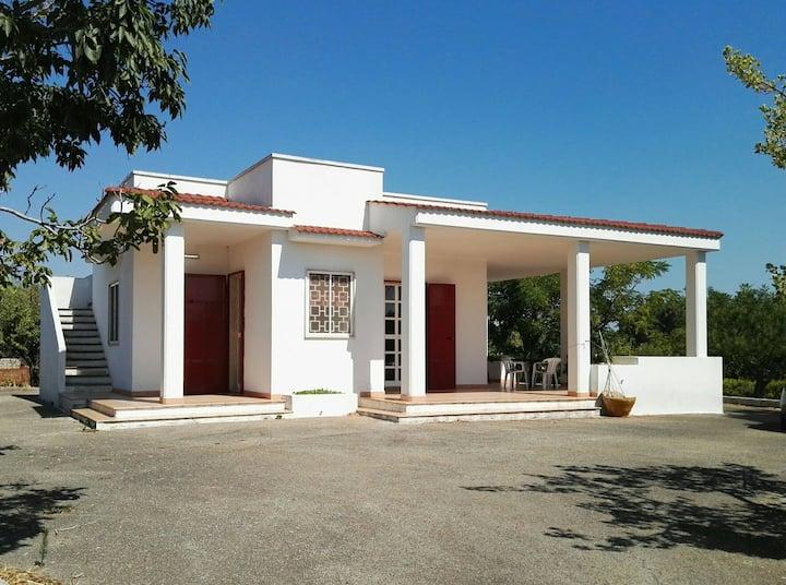 Indipendent Countryside House - Alto Salento