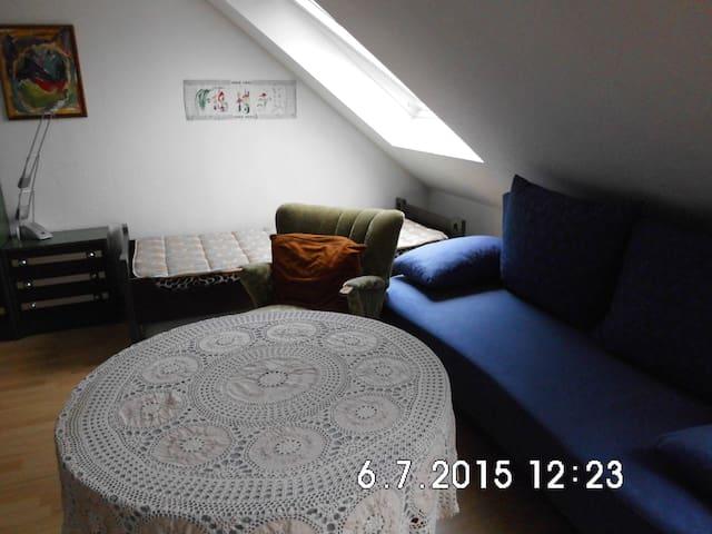Zimmer mit Bett und Schlafsofa - Bielefeld - House